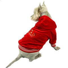 Czerwona bluza z kapturem dla psa