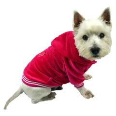 Amarantowa bluza z kapturem dla psa