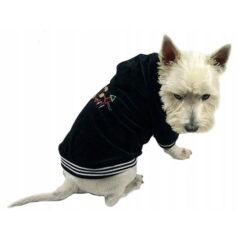 czarna bluza z kapturem dla psa
