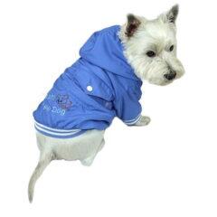 niebieska kurteczka dla psa