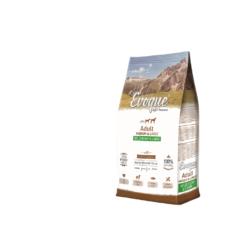 Evoque Adult Dziczyzna z jagnięciną Medium&Large Super Premium 12kg