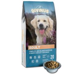 Divinus Adult dla psów dorosłych 20kg